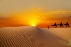 Pilgerreise im Wüstensand